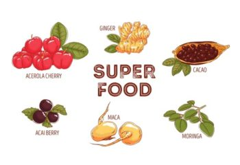 superfood-collection_23-2148485171